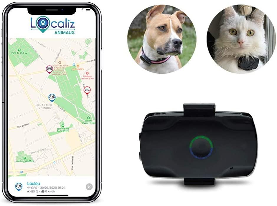 collier tracker gps pour chat localiz émission tf1