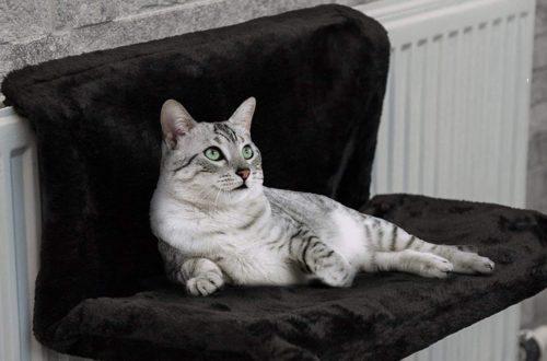 hamac pour chat lit radiateur